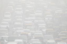 Laporan: pemanfaatan sumber daya alam efektif dalam mengurangi polusi