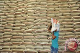 Kementan: Impor beras belum dibutuhkan