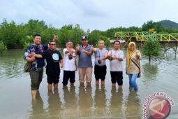Pulau Bawean akan menjadi destinasi maritim dunia