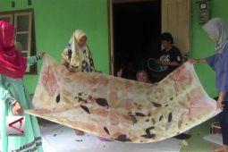 Mengenal batik ecoprint yang ramah lingkungan