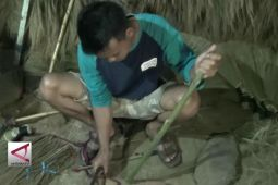 Menengok sentra kerajinan sapu tradisional di Pekalongan