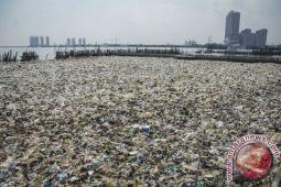 LSM desak ancaman kerusakan ekosistem pesisir Jakarta diatasi