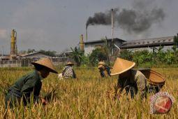 Inagri: Indonesia tak perlu impor pangan