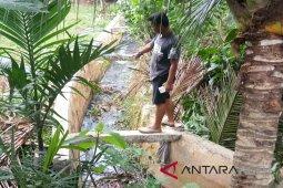 400 KK tercemar limbah karet di Tamiang