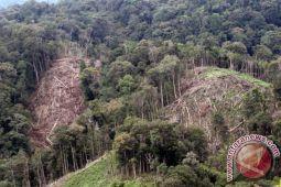 Pemerintah mengampanyekan pembukaan lahan tanpa bakar