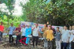 Pemkab Bangka Selatan kembangkan wisata mangrove