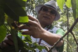 HKTI: Indonesia masih fase terciptanya ketahanan pangan