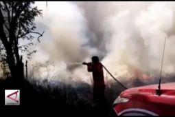 73 Ha Taman Nasional Rawaopa Watumohai terbakar