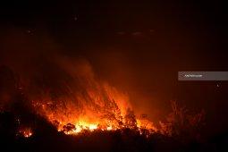 Kondisi ini sebabkan Perhutani sulit awasi potensi kebakaran hutan