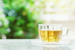 Waktu tepat menikmati teh hijau