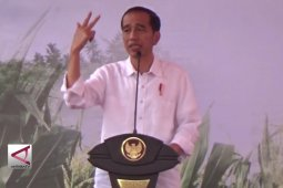 Presiden Sebut Persatuan Adalah Aset Terbesar Bangsa
