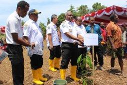 Papua Barat fokus kembangkan lima komoditas perkebunan