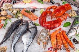 Makan seafood saat hamil dapat tingkatkan IQ anak