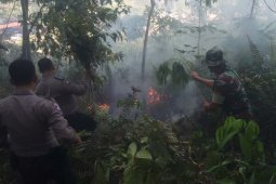 Dua hektare lahan di Aceh Tenggara terbakar diduga akibat puntung