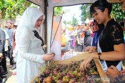 Pengunjung Padati Festival Manggis Purwakarta