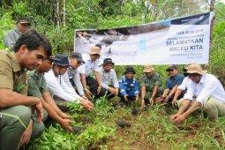 17 Maleo dilepasliarkan di Suaka Margasatwa Bakiriang