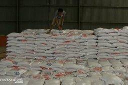 Hingga Idul Fitri, Stok beras di Bulog disiapkan 8.000 ton