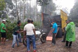 Polhut dan Kodim Tanggamus Lampung Tangkap Pembalak Liar