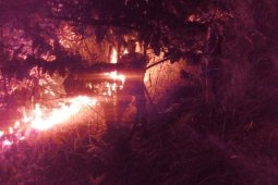 Kebakaran lahan terjadi di Aceh Selatan