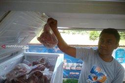 Lebaran, penjualan daging beku Bulog Rejang Lebong capai 13,5 ton