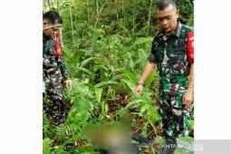 Pendamping desa di Nias ditemukan tewas di kebun warga