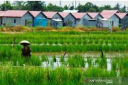Pemda tak bisa batalkan alih fungsi lahan pertanian