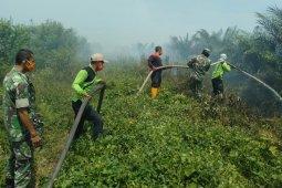 12 hektare kebun sawit di Nagan Raya terbakar