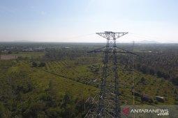 PLN UP3 Singkawang pelihara kabel jaringan listrik