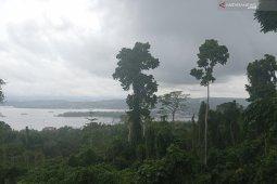 Seluruh wilayah di Papua Barat diperkirakan terjadi hujan Selasa-Rabu