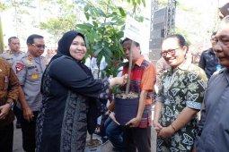 Bupati Masnah dukung program penanaman 25 pohon seumur hidup