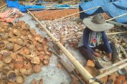 Harga komoditi kopra di Sulut naik 60 Persen