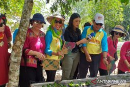 DPPP Bangka Selatan gelar festival bakar 20.000 otak-otak