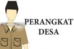 Diberhentikan sepihak, belasan perangkat desa di Padangsidimpuan protes