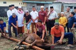 Keluarga besar Polres Tapanuli Selatan sembelih 11 ekor hewan kurban