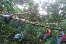 Penggalas ayam meninggal kesetrum listrik di  Gunungsitoli