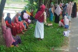 Minta suami dibebaskan, seratusan emak-emak datangi Polres Abdya