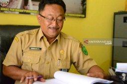 Dinas Pertanian Padangsidimpuan targetkan produksi padi 66.550 ton, Salak 825 ton pada 2020