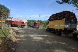 Harga TBS naik, produksi sawit di Abdya Anjlok