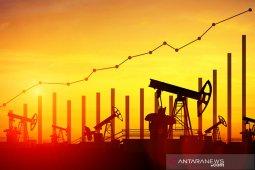 Minyak sedikit berubah meskipun OPEC+ berencana memperdalam pemotongan