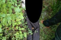 Mayat dengan tangan dan kaki terikat ditemukan di tepi Jalinsum Labusel
