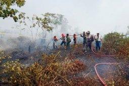 Malaysia tawarkan pemadaman api di Kalimantan dan Sumatera