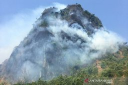 Diduga diakibatkan puntung rokok, Bukit Kandis terbakar