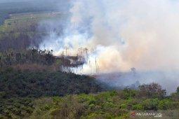 Presiden Jokowi akan tinjau kebakaran hutan di Riau
