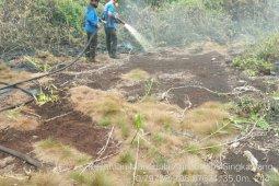 Ratusan hektare lahan di Singkawang terbakar sepanjang 2019