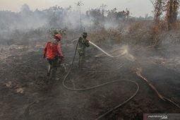 LIPI  sebut kebakaran hutan dan lahan bukan karena faktor alam