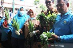Dinas Pangan Aceh uji sampel buah dan sayur segar di pasar induk Takengon