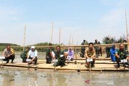 Wagub Jatim ajak masyarakat pertahankan ekosistem mangrove