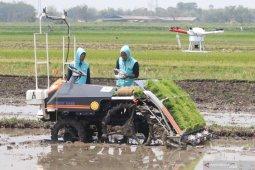 Efek Percepatan Kebijakan Infrastruktur Berkontribusi Sektor Pertanian Meningkat