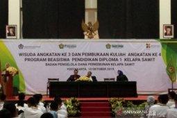 Kemenko Perekonomian: Peluang kerja sektor sawit semakin terbuka