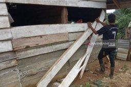 Gangguan gajah di Aceh belum mereda